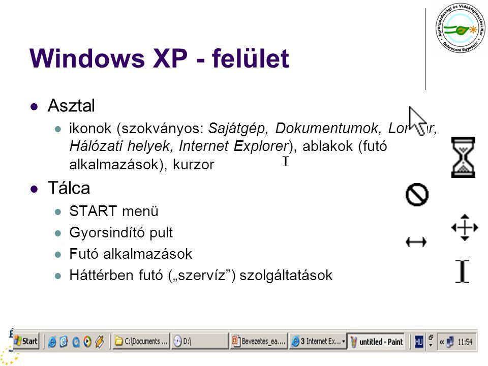 """Windows XP - felület Asztal ikonok (szokványos: Sajátgép, Dokumentumok, Lomtár, Hálózati helyek, Internet Explorer), ablakok (futó alkalmazások), kurzor Tálca START menü Gyorsindító pult Futó alkalmazások Háttérben futó (""""szervíz ) szolgáltatások"""