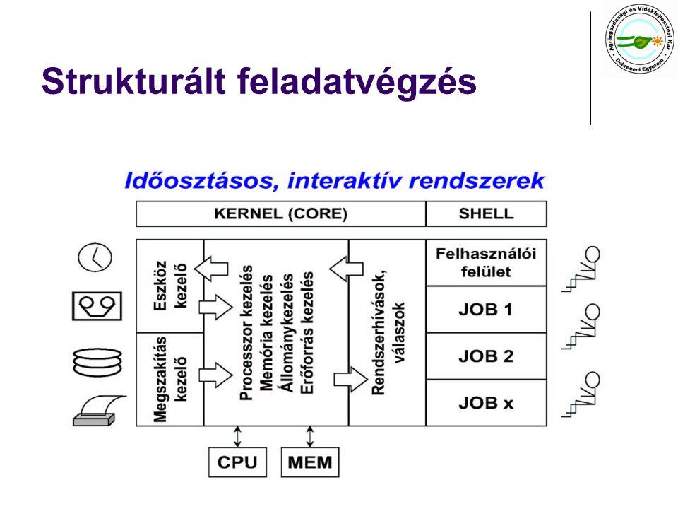 Strukturált feladatvégzés