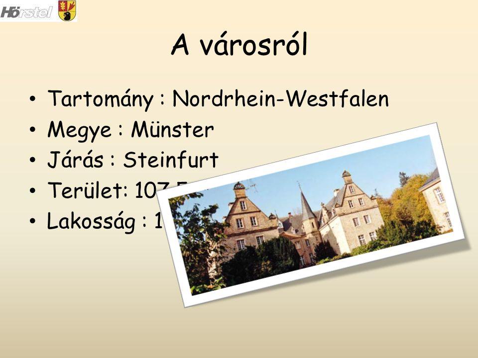 A városról Tartomány : Nordrhein-Westfalen Megye : Münster Járás : Steinfurt Terület: 107,54 km 2 Lakosság : 19610 fő