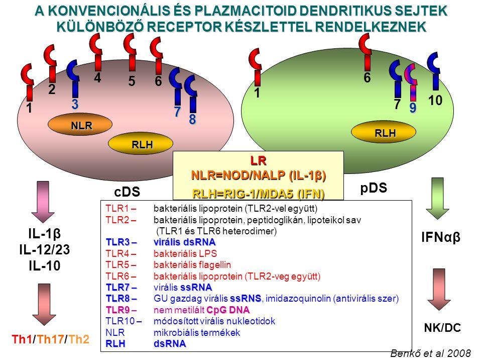 cDS pDS 5 8 7 3 7 10 9 TLR1 – bakteriális lipoprotein (TLR2-vel együtt) TLR2 –bakteriális lipoprotein, peptidoglikán, lipoteikol sav (TLR1 és TLR6 heterodimer) TLR3 –virális dsRNA TLR4 – bakteriális LPS TLR5 – bakteriális flagellin TLR6 –bakteriális lipoprotein (TLR2-veg együtt) TLR7 –ssRNA TLR7 – virális ssRNA TLR8 –ssRNS TLR8 – GU gazdag virális ssRNS, imidazoquinolin (antivirális szer) TLR9CpG DNA TLR9 – nem metilált CpG DNA TLR10 – módosított virális nukleotidok NLR mikrobiális termékek RLHdsRNA LR NLR=NOD/NALP (IL-1β) RLH=RIG-1/MDA5 (IFN) NLR A KONVENCIONÁLIS ÉS PLAZMACITOID DENDRITIKUS SEJTEK KÜLÖNBÖZŐ RECEPTOR KÉSZLETTEL RENDELKEZNEK IL-1β IL-12/23 IL-10 Th1/Th17/Th2 IFNαβ NK/DC 124616 Benkő et al 2008 RLH RLH