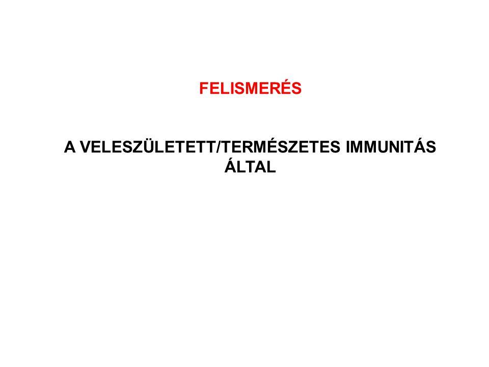 FELISMERÉS A VELESZÜLETETT/TERMÉSZETES IMMUNITÁS ÁLTAL