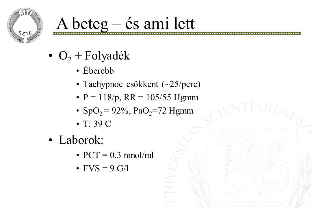 O 2 + Folyadék Éberebb Tachypnoe csökkent (~25/perc) P = 118/p, RR = 105/55 Hgmm SpO 2 = 92%, PaO 2 =72 Hgmm T: 39 C Laborok: PCT = 0.3 nmol/ml FVS =