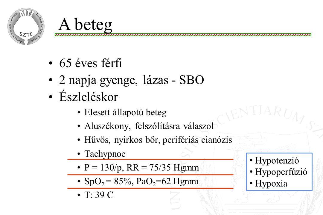 Az adósság… DO 2 = (SV P) (Hb 1.39 SaO 2 +0.003 PaO 2 ) ~ 800ml/p (SaO 2 =88%) VO 2 = CO (CaO 2 - CvO 2 ) ~ 400 ml/p (ScvO 2 ~50%) COCaO 2