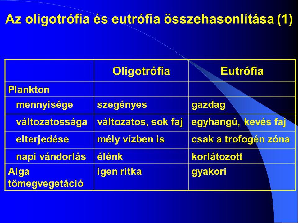 Az oligotrófia és eutrófia összehasonlítása (1) OligotrófiaEutrófia Plankton mennyiségeszegényesgazdag változatosságaváltozatos, sok fajegyhangú, kevés faj elterjedésemély vízben iscsak a trofogén zóna napi vándorlásélénkkorlátozott Alga tömegvegetáció igen ritkagyakori