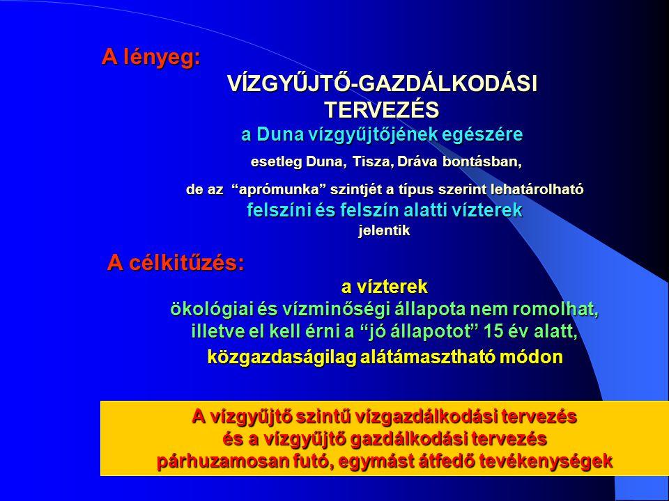 A lényeg: VÍZGYŰJTŐ-GAZDÁLKODÁSITERVEZÉS a Duna vízgyűjtőjének egészére esetleg Duna, Tisza, Dráva bontásban, esetleg Duna, Tisza, Dráva bontásban, A vízgyűjtő szintű vízgazdálkodási tervezés és a vízgyűjtő gazdálkodási tervezés párhuzamosan futó, egymást átfedő tevékenységek de az aprómunka szintjét a típus szerint lehatárolható felszíni és felszín alatti vízterek jelentik A célkitűzés: a vízterek ökológiai és vízminőségi állapota nem romolhat, illetve el kell érni a jó állapotot 15 év alatt, közgazdaságilag alátámasztható módon