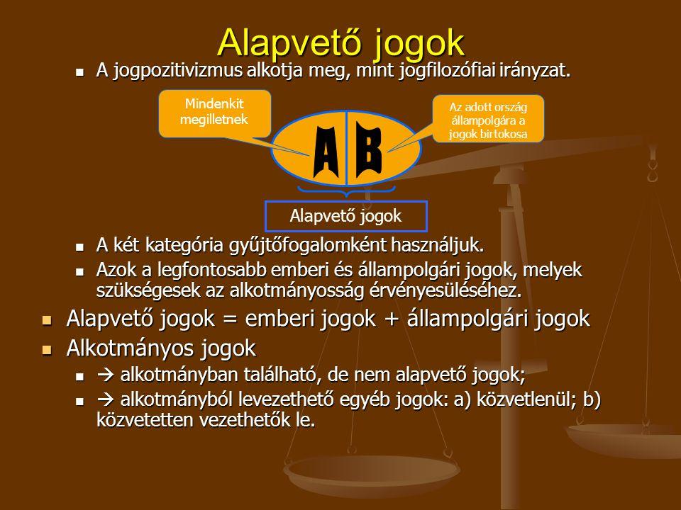 A jogpozitivizmus alkotja meg, mint jogfilozófiai irányzat.