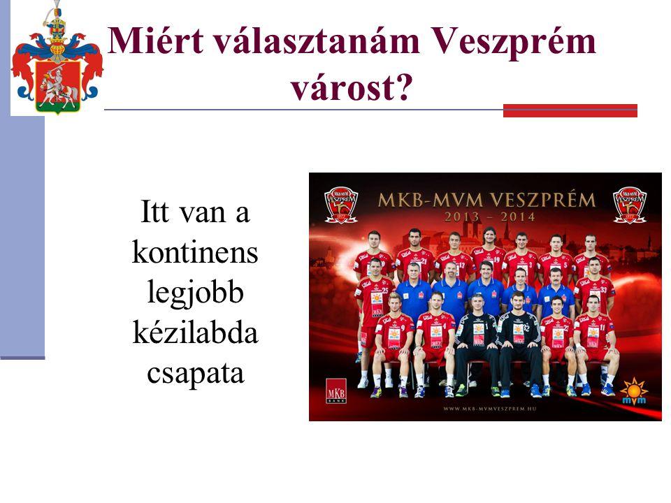 Miért választanám Veszprém várost? Itt van a kontinens legjobb kézilabda csapata