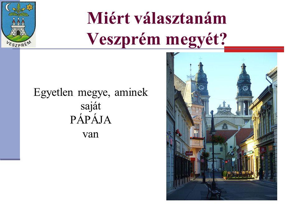 Miért választanám Veszprém megyét? Egyetlen megye, aminek saját PÁPÁJA van