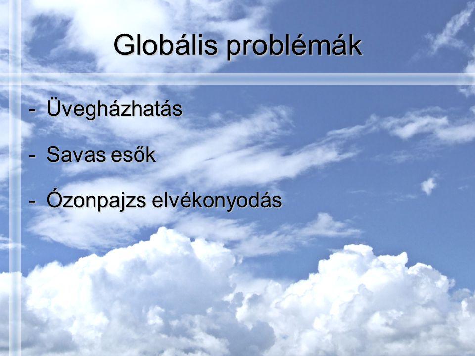 Globális problémák -Üvegházhatás -Savas esők -Ózonpajzs elvékonyodás