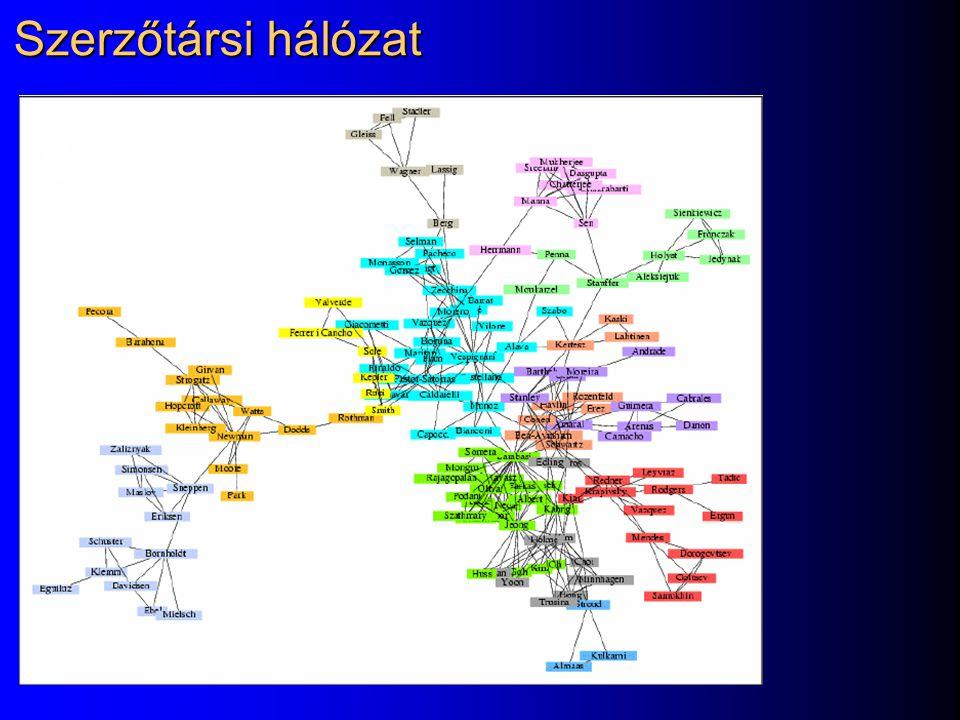Szerzőtársi hálózat