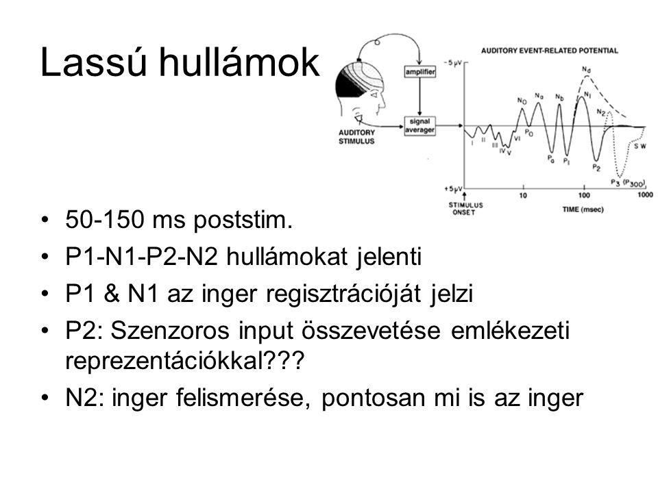 Lassú hullámok 50-150 ms poststim. P1-N1-P2-N2 hullámokat jelenti P1 & N1 az inger regisztrációját jelzi P2: Szenzoros input összevetése emlékezeti re