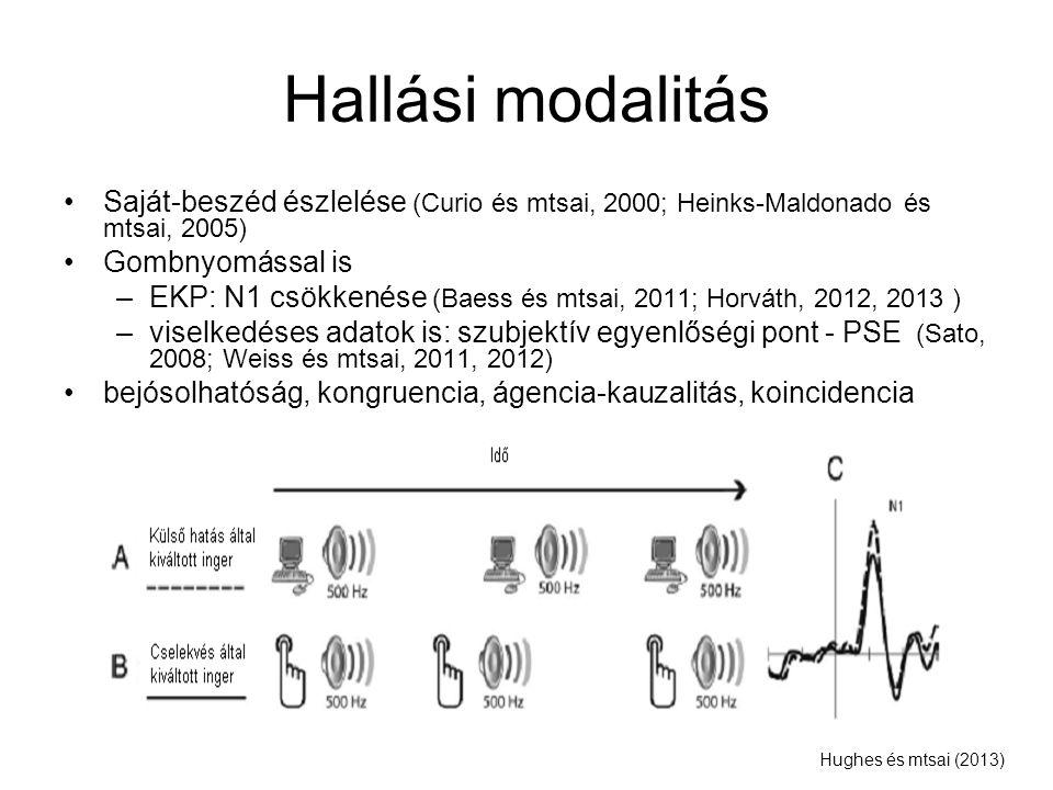 Hallási modalitás Saját-beszéd észlelése (Curio és mtsai, 2000; Heinks-Maldonado és mtsai, 2005) Gombnyomással is –EKP: N1 csökkenése (Baess és mtsai,