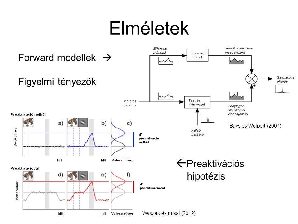 Elméletek  Preaktivációs hipotézis Forward modellek  Figyelmi tényezők Bays és Wolpert (2007) Waszak és mtsai (2012)