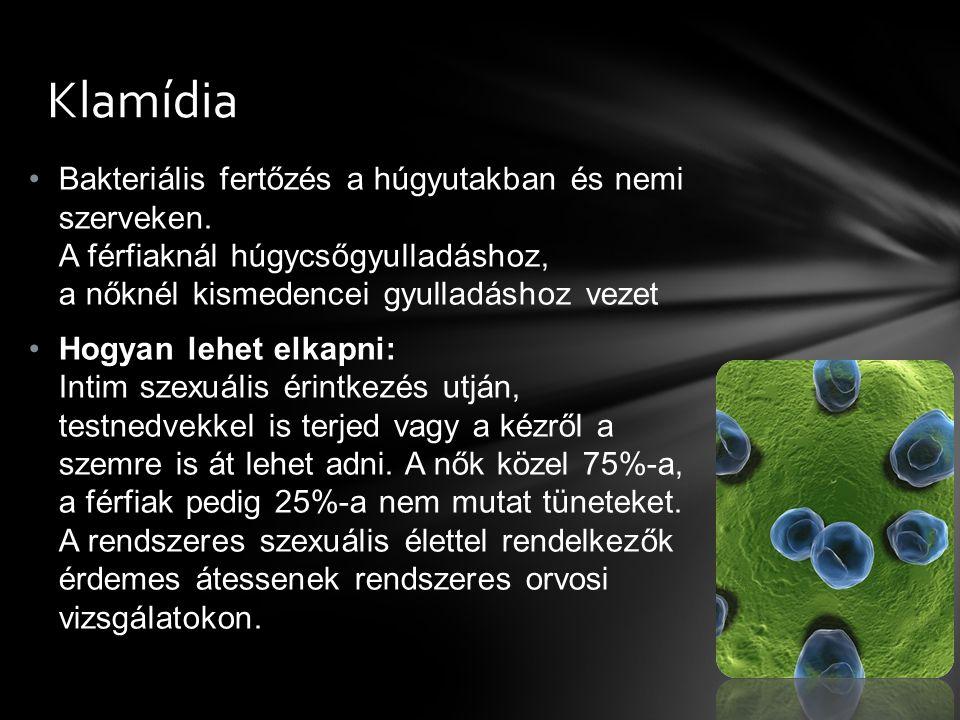 Bakteriális fertőzés a húgyutakban és nemi szerveken. A férfiaknál húgycsőgyulladáshoz, a nőknél kismedencei gyulladáshoz vezet Hogyan lehet elkapni: