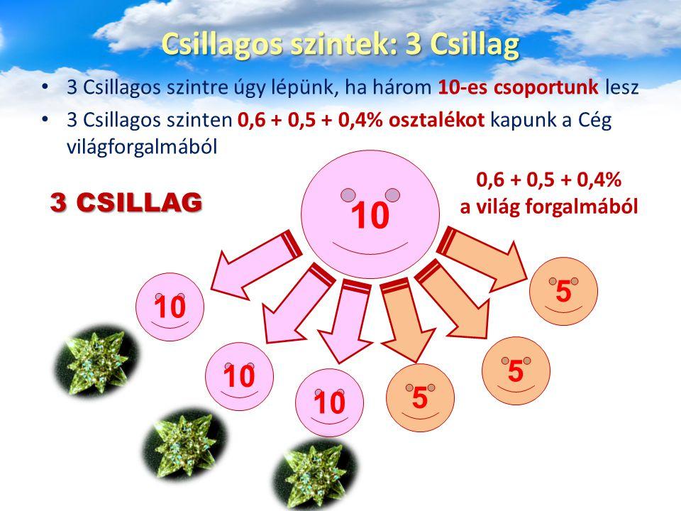 3 Csillagos szintre úgy lépünk, ha három 10-es csoportunk lesz 3 Csillagos szinten 0,6 + 0,5 + 0,4% osztalékot kapunk a Cég világforgalmából Csillagos szintek: 3 Csillag 10 5 5 5 0,6 + 0,5 + 0,4% a világ forgalmából 3 CSILLAG