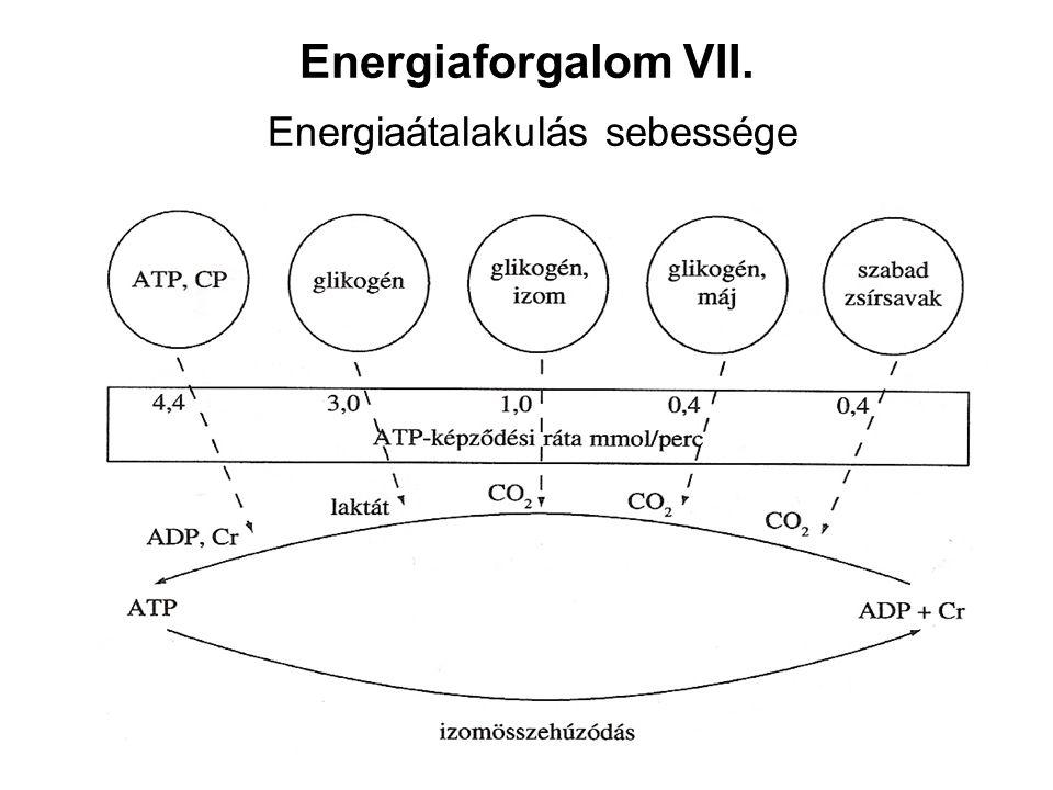 Energiaforgalom VII. Energiaátalakulás sebessége