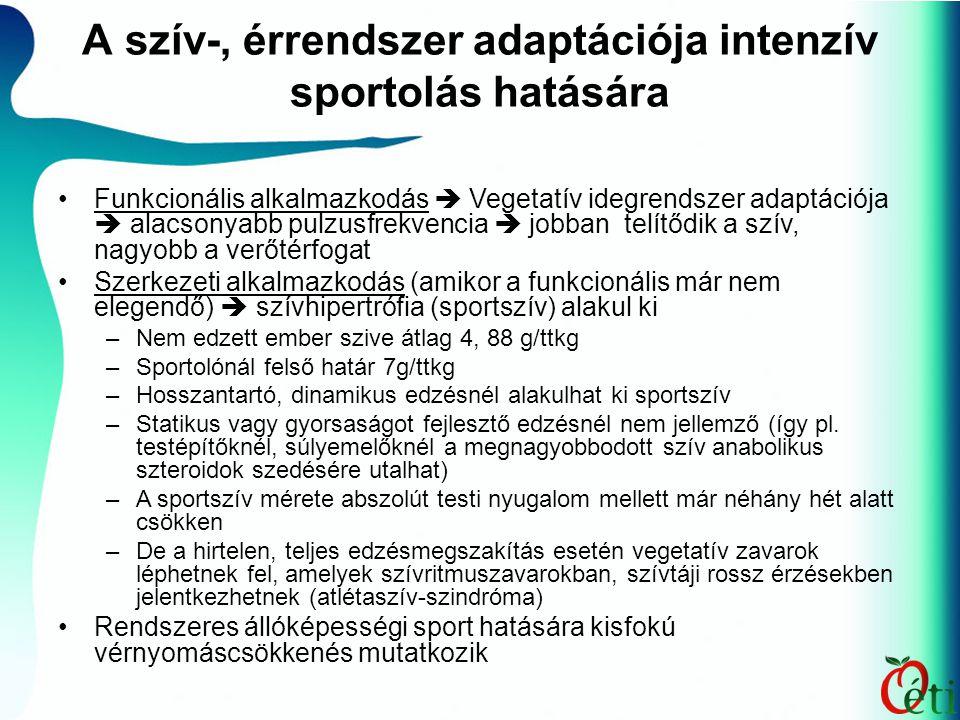 A szív-, érrendszer adaptációja intenzív sportolás hatására Funkcionális alkalmazkodás  Vegetatív idegrendszer adaptációja  alacsonyabb pulzusfrekvencia  jobban telítődik a szív, nagyobb a verőtérfogat Szerkezeti alkalmazkodás (amikor a funkcionális már nem elegendő)  szívhipertrófia (sportszív) alakul ki –Nem edzett ember szive átlag 4, 88 g/ttkg –Sportolónál felső határ 7g/ttkg –Hosszantartó, dinamikus edzésnél alakulhat ki sportszív –Statikus vagy gyorsaságot fejlesztő edzésnél nem jellemző (így pl.