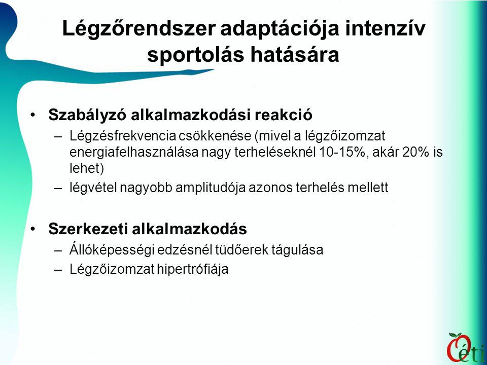 Légzőrendszer adaptációja intenzív sportolás hatására Szabályzó alkalmazkodási reakció –Légzésfrekvencia csökkenése (mivel a légzőizomzat energiafelha