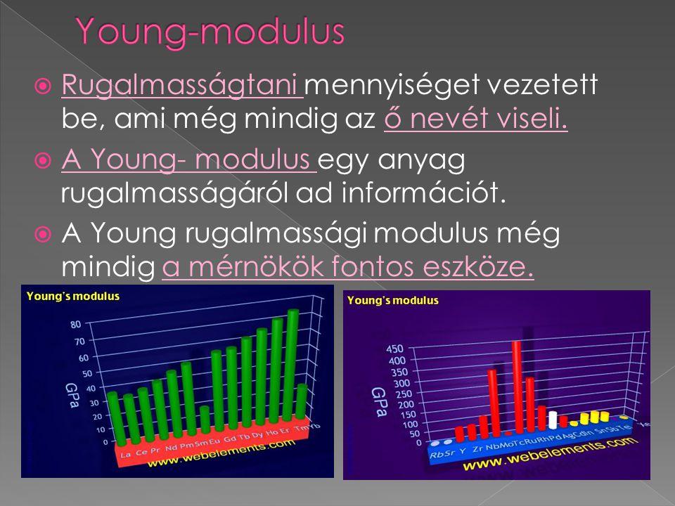  Young leginkább a fénnyel kapcsolatban végzett kutatásaival vált híressé.