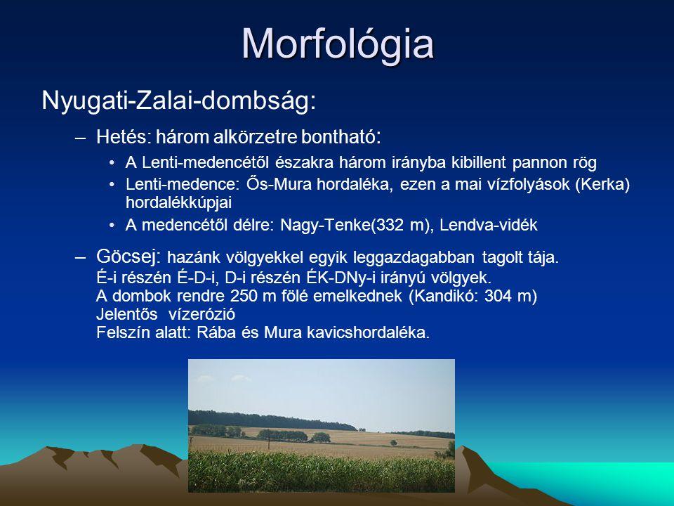 Morfológia Nyugati-Zalai-dombság: –Hetés: három alkörzetre bontható : A Lenti-medencétől északra három irányba kibillent pannon rög Lenti-medence: Ős-