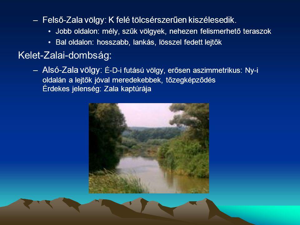 –Felső-Zala völgy: K felé tölcsérszerűen kiszélesedik. Jobb oldalon: mély, szűk völgyek, nehezen felismerhető teraszok Bal oldalon: hosszabb, lankás,