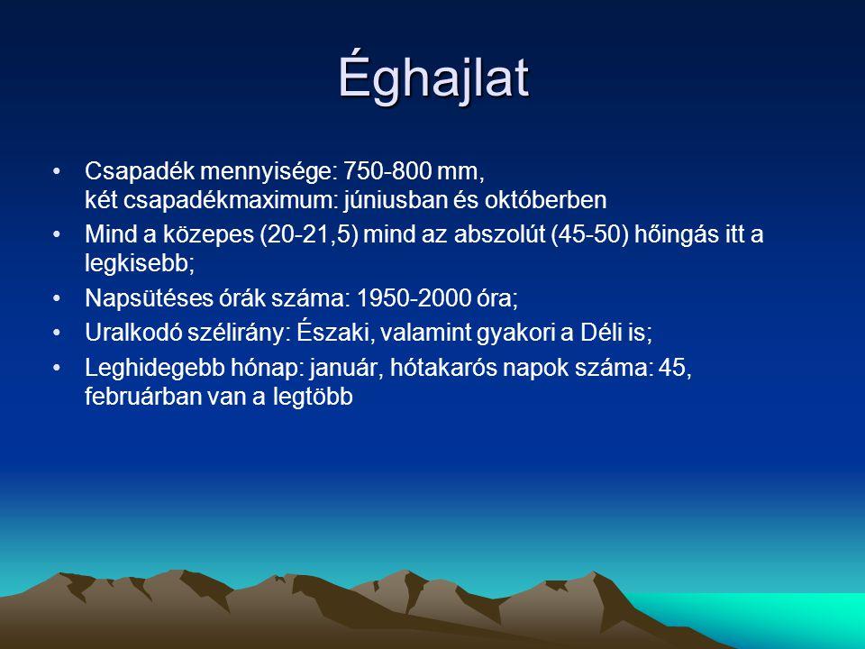 Éghajlat Csapadék mennyisége: 750-800 mm, két csapadékmaximum: júniusban és októberben Mind a közepes (20-21,5) mind az abszolút (45-50) hőingás itt a