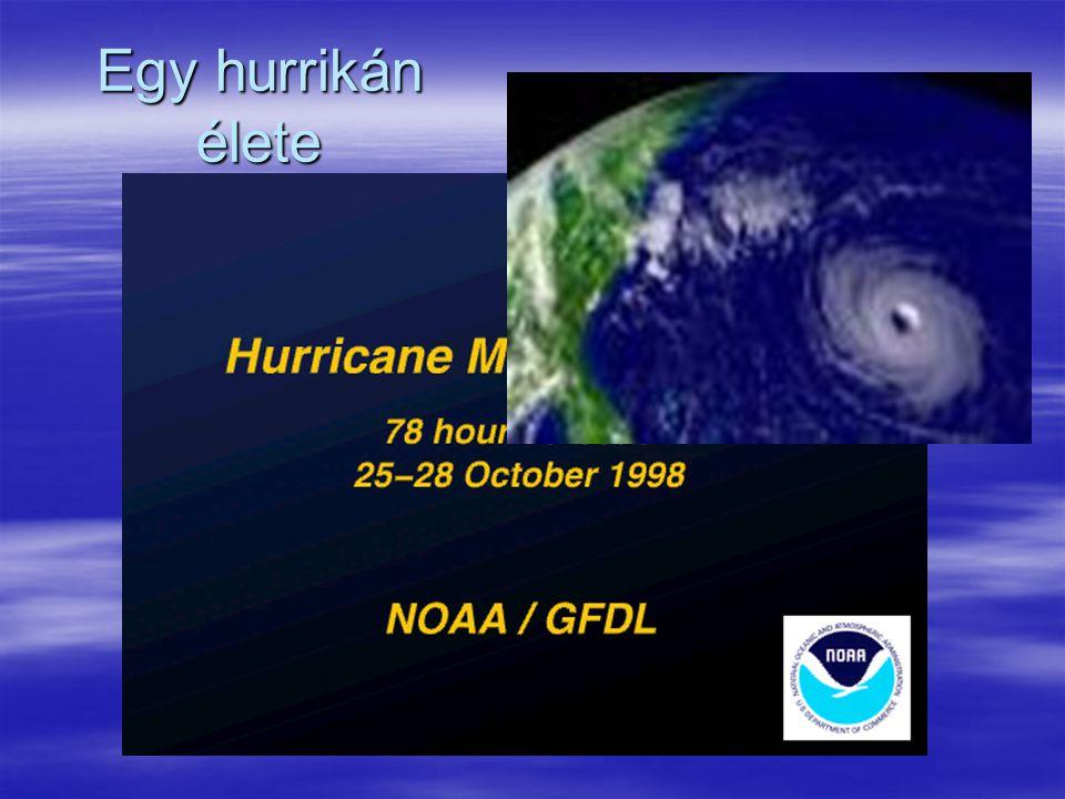 Egy hurrikán élete