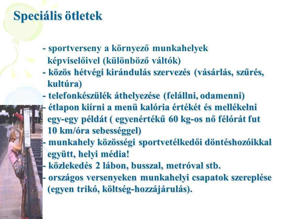 Speciális ötletek - sportverseny a környező munkahelyek képviselőivel (különböző váltók) - közös hétvégi kirándulás szervezés (vásárlás, szűrés, kultú