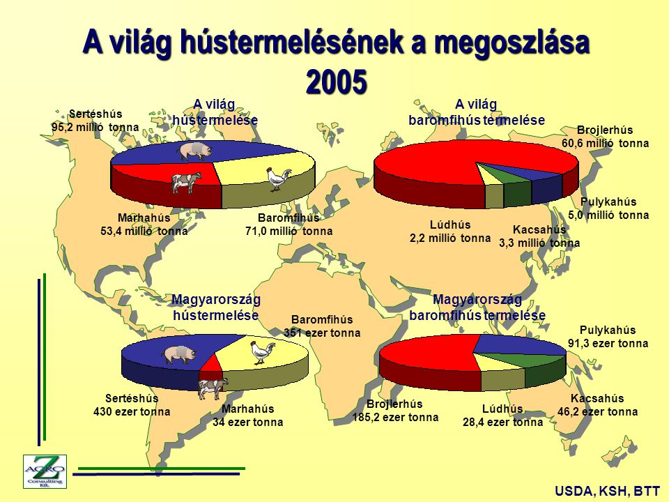 A világ hústermelésének a megoszlása 2005 USDA, KSH, BTT Marhahús 53,4 millió tonna Sertéshús 95,2 millió tonna Baromfihús 71,0 millió tonna Brojlerhús 60,6 millió tonna Pulykahús 5,0 millió tonna Kacsahús 3,3 millió tonna Lúdhús 2,2 millió tonna Brojlerhús 185,2 ezer tonna Pulykahús 91,3 ezer tonna Kacsahús 46,2 ezer tonna Lúdhús 28,4 ezer tonna Magyarország baromfihús termelése A világ baromfihús termelése A világ hústermelése Magyarország hústermelése Sertéshús 430 ezer tonna Baromfihús 351 ezer tonna Marhahús 34 ezer tonna