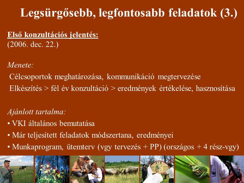 Legsürgősebb, legfontosabb feladatok (3.) Első konzultációs jelentés: (2006.