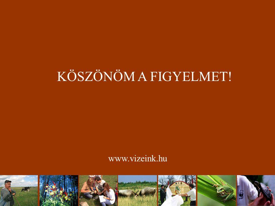 KÖSZÖNÖM A FIGYELMET! www.vizeink.hu