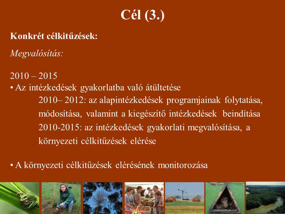 Cél (3.) Konkrét célkitűzések: Megvalósítás: 2010 – 2015 Az intézkedések gyakorlatba való átültetése 2010– 2012: az alapintézkedések programjainak folytatása, módosítása, valamint a kiegészítő intézkedések beindítása 2010-2015: az intézkedések gyakorlati megvalósítása, a környezeti célkitűzések elérése A környezeti célkitűzések elérésének monitorozása
