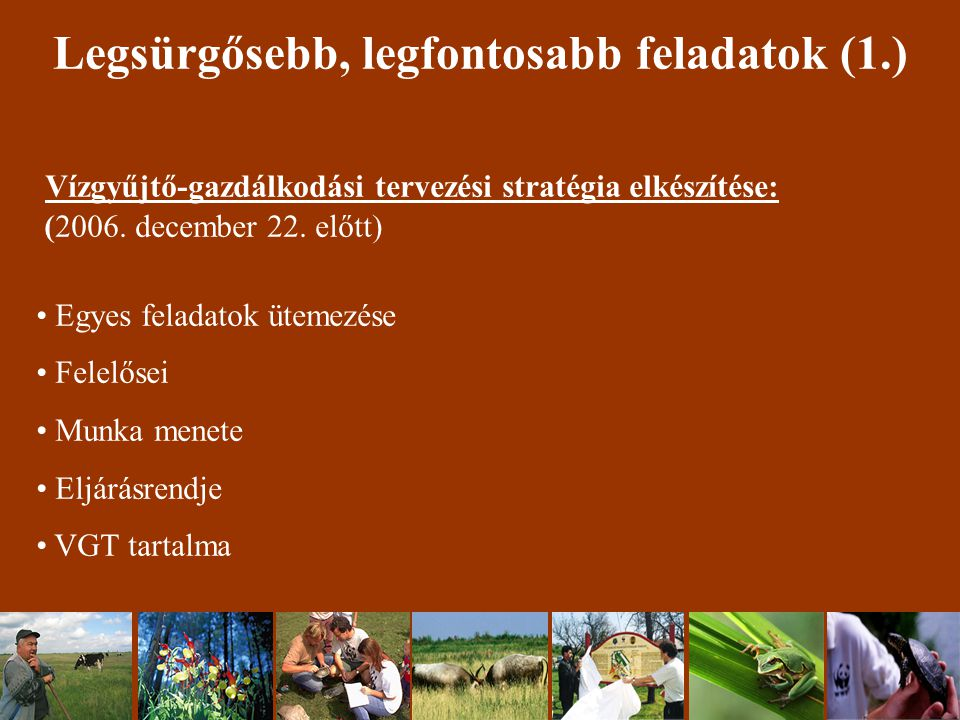Legsürgősebb, legfontosabb feladatok (1.) Vízgyűjtő-gazdálkodási tervezési stratégia elkészítése: (2006.