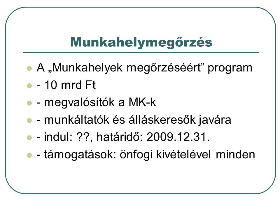 """Munkahelymegőrzés A """"Munkahelyek megőrzéséért program - 10 mrd Ft - megvalósítók a MK-k - munkáltatók és álláskeresők javára - indul: , határidő: 2009.12.31."""