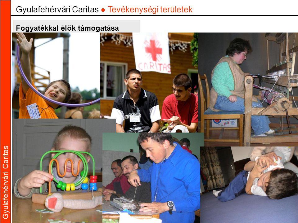 Gyulafehérvári Caritas Fogyatékkal élők támogatása Gyulafehérvári Caritas ● Tevékenységi területek
