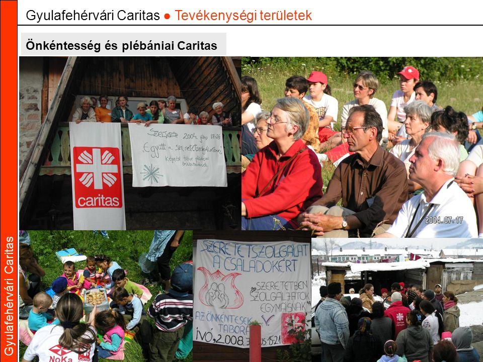 Gyulafehérvári Caritas Önkéntesség és plébániai Caritas Gyulafehérvári Caritas ● Tevékenységi területek