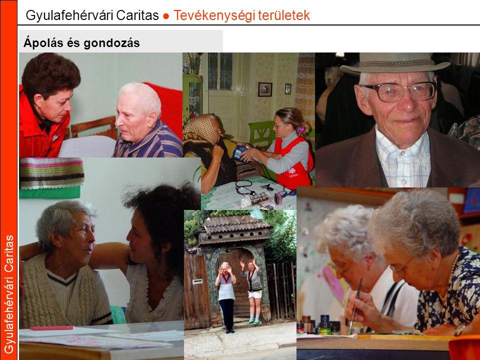 Gyulafehérvári Caritas Ápolás és gondozás Gyulafehérvári Caritas ● Tevékenységi területek