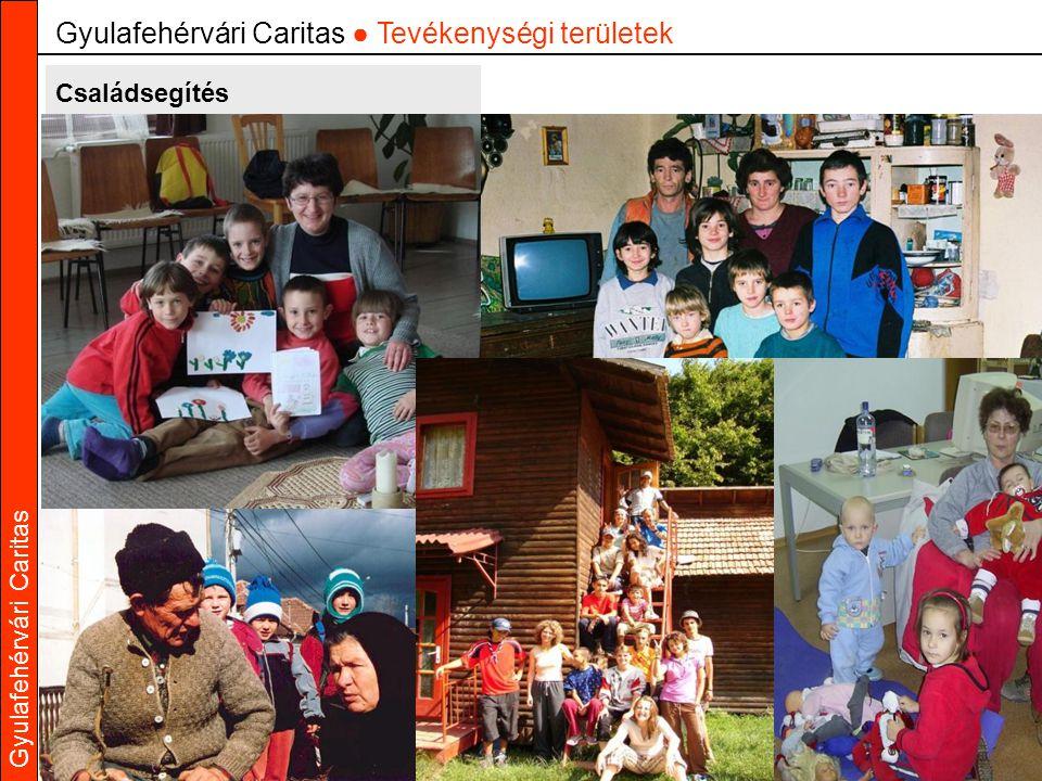 Gyulafehérvári Caritas Családsegítés Gyulafehérvári Caritas ● Tevékenységi területek