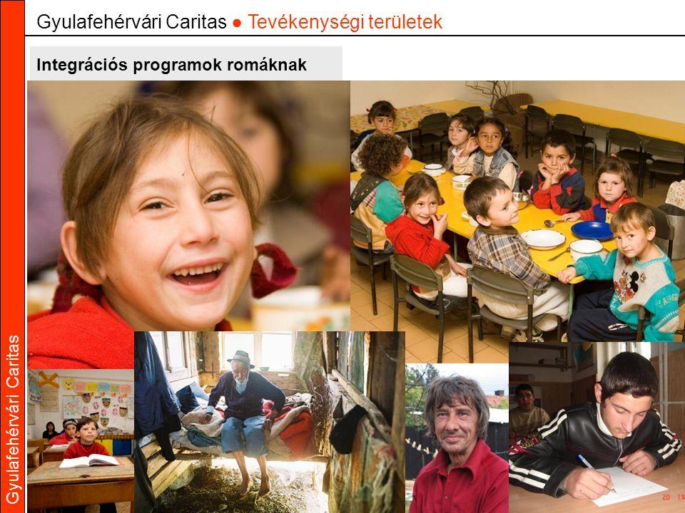 Gyulafehérvári Caritas Integrációs programok romáknak Gyulafehérvári Caritas ● Tevékenységi területek