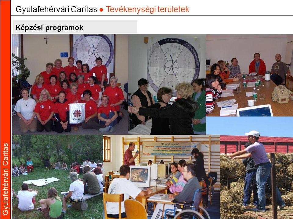 Gyulafehérvári Caritas Képzési programok Gyulafehérvári Caritas ● Tevékenységi területek