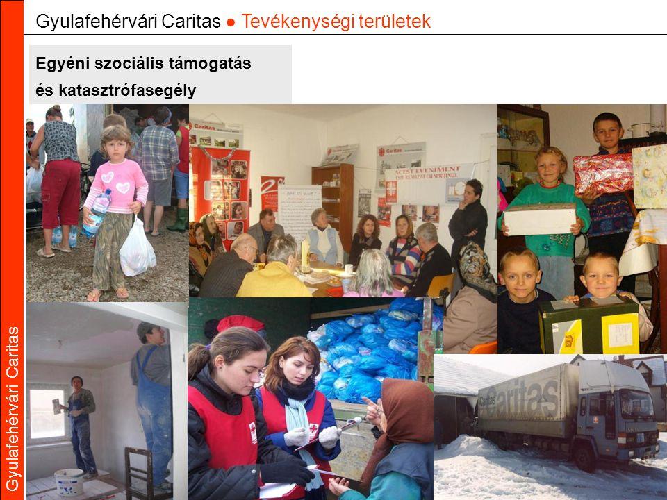 Gyulafehérvári Caritas Egyéni szociális támogatás és katasztrófasegély Gyulafehérvári Caritas ● Tevékenységi területek