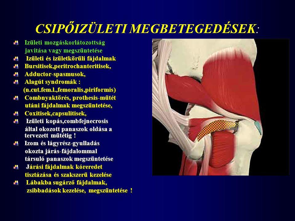 CSIPŐIZÜLETI MEGBETEGEDÉSEK: Izületi mozgáskorlátozottság javitása vagy megszüntetése Izületi és izületkörüli fájdalmak Bursitisek,peritrochanteritise