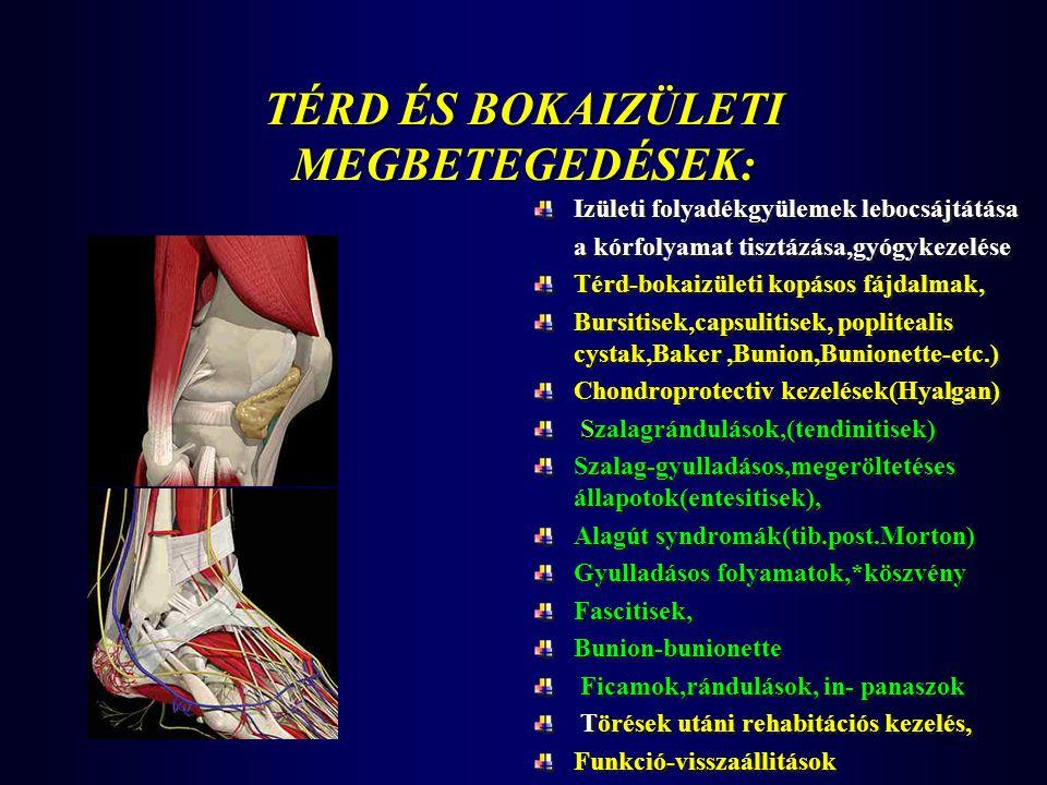 TÉRD ÉS BOKAIZÜLETI MEGBETEGEDÉSEK: Izületi folyadékgyülemek lebocsájtátása a kórfolyamat tisztázása,gyógykezelése Térd-bokaizületi kopásos fájdalmak,