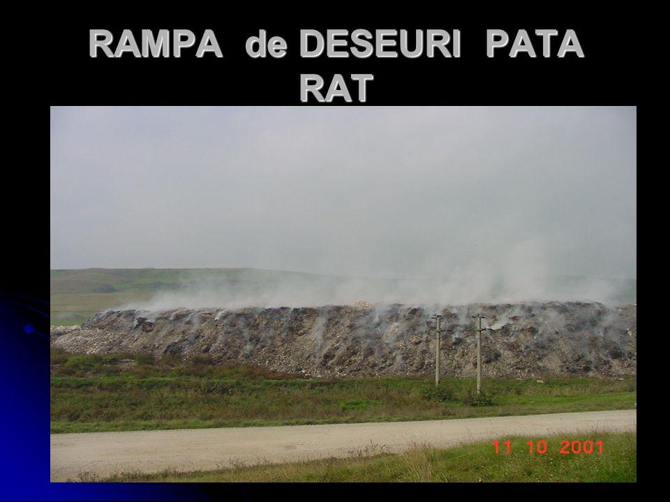 RAMPA de DESEURI PATA RAT