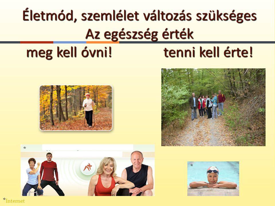 Életmód, szemlélet változás szükséges Az egészség érték meg kell óvni! tenni kell érte! * * * * Internet