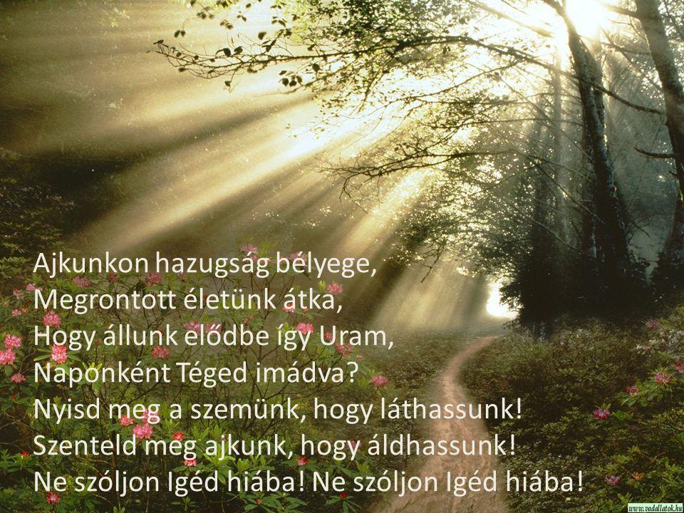 Ajkunkon hazugság bélyege, Megrontott életünk átka, Hogy állunk elődbe így Uram, Naponként Téged imádva? Nyisd meg a szemünk, hogy láthassunk! Szentel