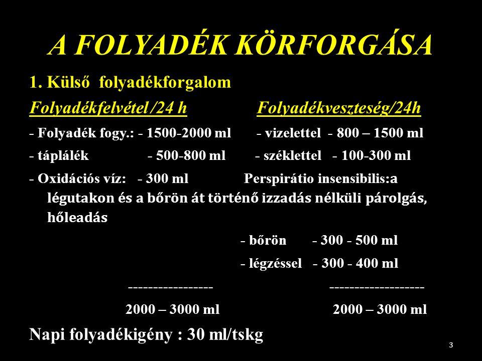 A FOLYADÉK KÖRFORGÁSA 1. Külső folyadékforgalom Folyadékfelvétel /24 h Folyadékveszteség/24h - Folyadék fogy.: - 1500-2000 ml - vizelettel - 800 – 150