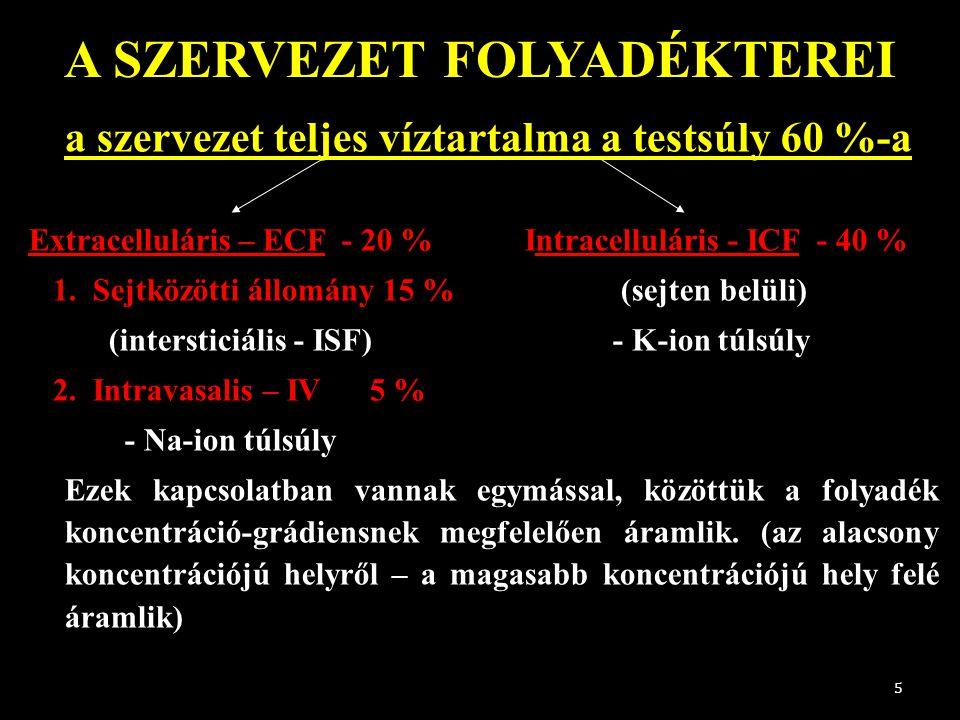 A SZERVEZET FOLYADÉKTEREI a szervezet teljes víztartalma a testsúly 60 %-a Extracelluláris – ECF - 20 % Intracelluláris - ICF - 40 % 1. Sejtközötti ál