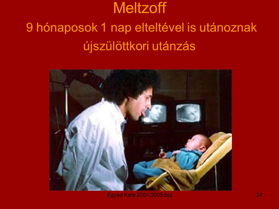 Egyed Kata 2004/2005 ősz24 Meltzoff 9 hónaposok 1 nap elteltével is utánoznak újszülöttkori utánzás