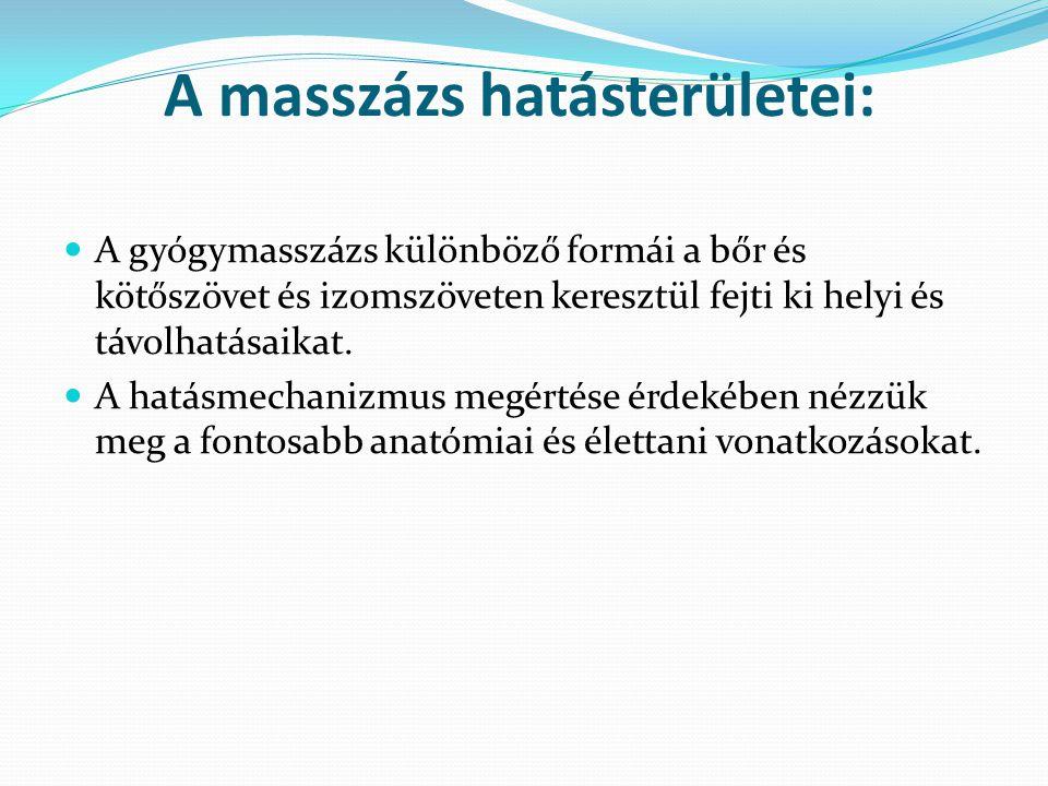 A masszázs hatásterületei: A gyógymasszázs különböző formái a bőr és kötőszövet és izomszöveten keresztül fejti ki helyi és távolhatásaikat. A hatásme